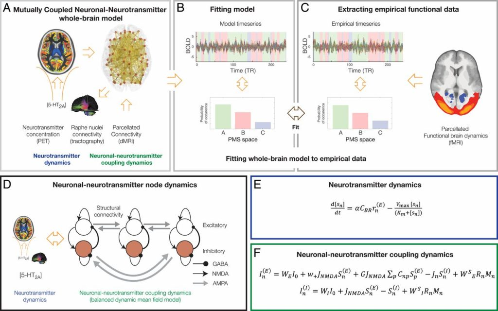 Dynamic Coupling of Whole-Brain Systems